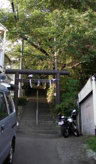 Susuki6